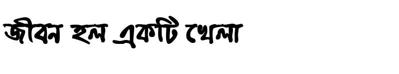 Preview of BhrahmaputraMJ Bold