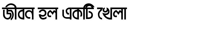 Preview of BrahmaputraMJ Bold